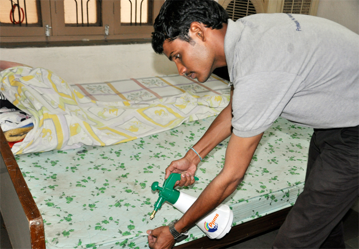 Bed Bugs Killing Products India